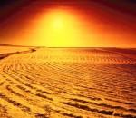 desert1_opt11